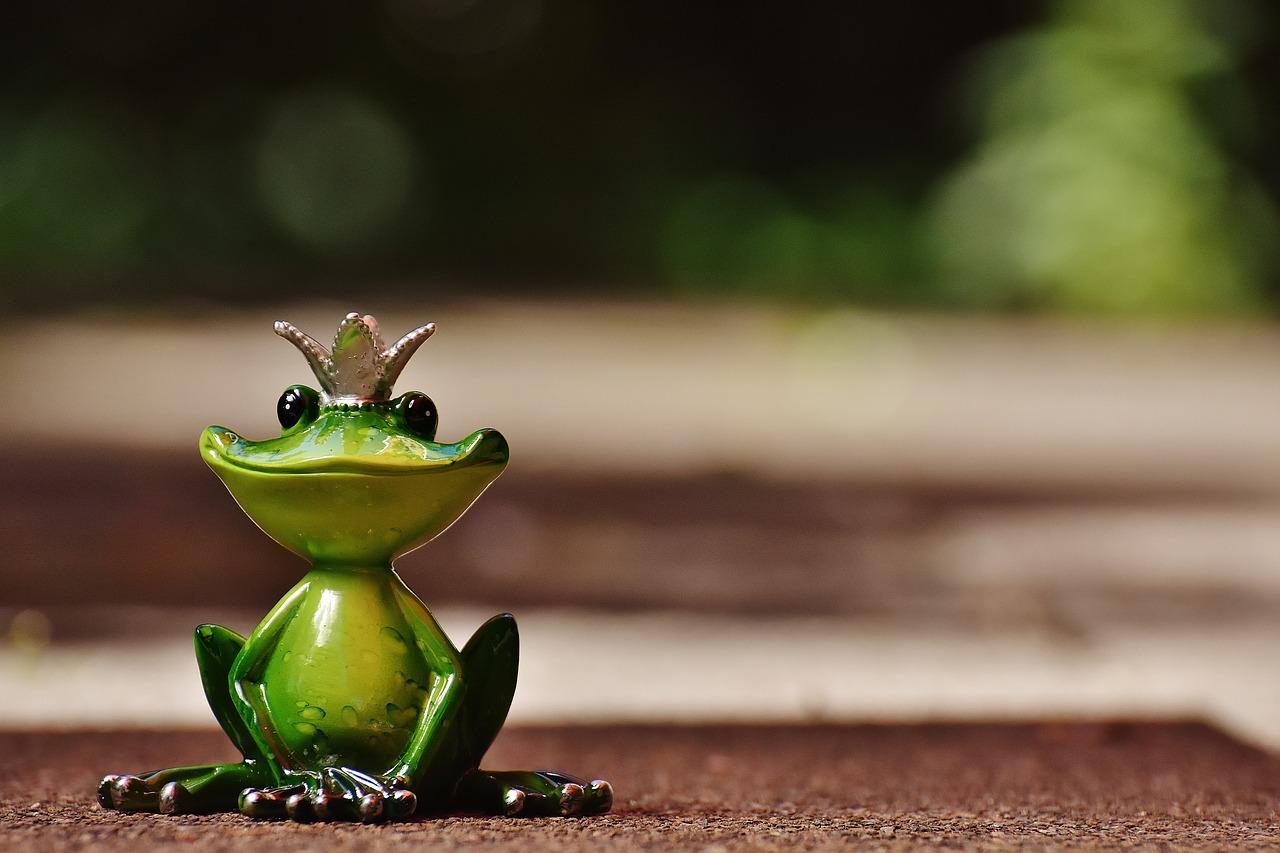 frog-1591901_1280